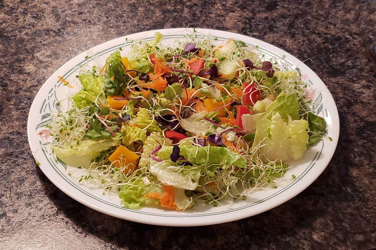 Veggie Vittles
